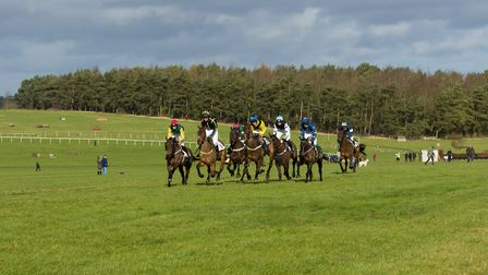 Racing goes at Horseheath on Saturday. Picture: GRAHAM BISHOP PHOTOGRAPHY