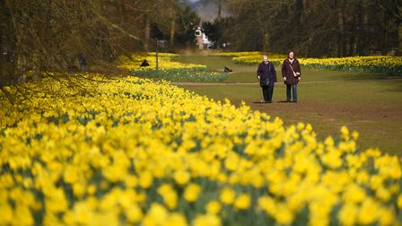 The warmer spring weather is due to end today with cooler temperatures of around 10-11C in Suffolk a
