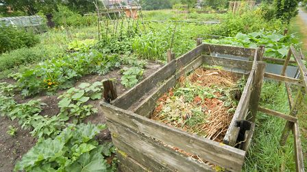 As well as creating free soil-improver for the garden, home composting also diverts food waste from