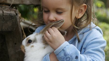 Hug a bunny at Baylham Farm Picture: Getty Images/iStockphoto