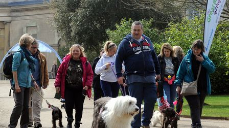The Great British Dog Walk in aid of Hearing Dogs for Deaf People is returning to Ickworth Park Pict