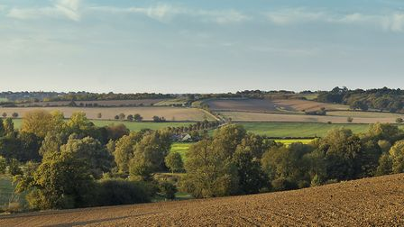 Prime arable land in the eastern counties remains relatively stable, says Savills Picture: CHRIS RA