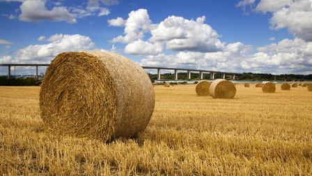 East Anglia accounted for 15% of the land across England put on the market in the first quarter of 2