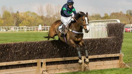 Multimedia and Rupert Stearn were popular winners of the Restricted race at Fakenham. Picture: GRAHA
