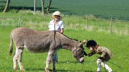 Amos the donkey and Kira at a previous Redwings Show Picture: LIZ BARRETT