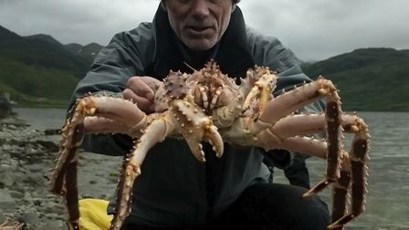Jeremy with a huge spider crab at Dutch Harbour, Alaska. Picture: Jimmy Cape