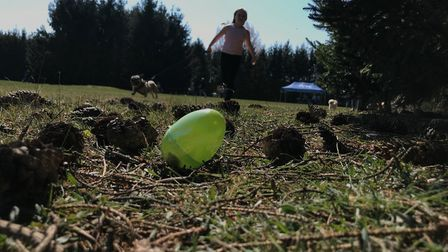 An Easter egg hunt for dogs took place in Woodbridge today Picture: ELLA WILKINSON