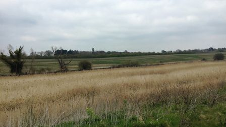 Aldhurst Farm has been created to compensate for the environmental impact which may be caused by Siz
