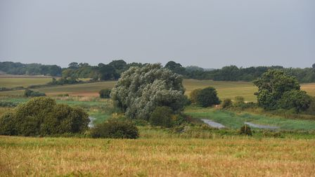 Aldhurst Farm is in Leiston, near to the planned Sizewell C development. Picture: PHIL MORLEY