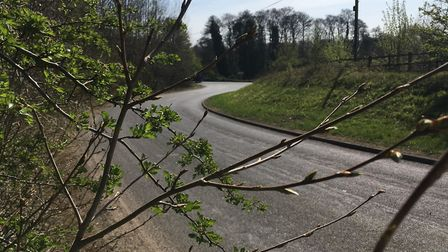 A cyclist, aged in his 40s, has died following a crash near Creeting St Mary Picture: NEIL PERRY
