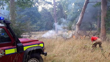 Firefighters tackling a previous blaze in Thetford forest. Picture: Norfolk Fire and Rescue Service