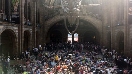 Extinction Rebellion protestors lying down inside the Natural History Museum in London. Picture: Mas