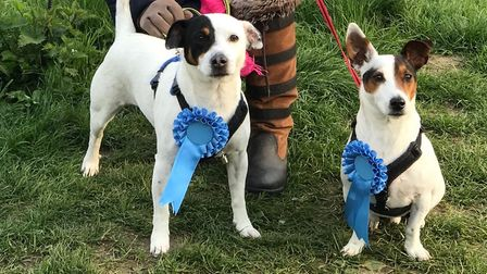 Bertie and Alfie spreading the Conservative message in Mendlesham. Picture; ELAINE BRYCE