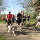 It was a record-breaking day at the Ipswich parkrun, with dogs as well runners in action Picture: I