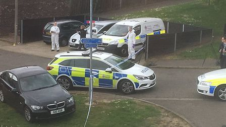 Witnesses said up to 20 police cars were at the scene of the stabbing in Colchester Picture: SIMON D