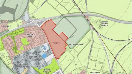 The masterplan for the Hatchfield development area at Newmarket Picture: SOPHIE SMITH LTD