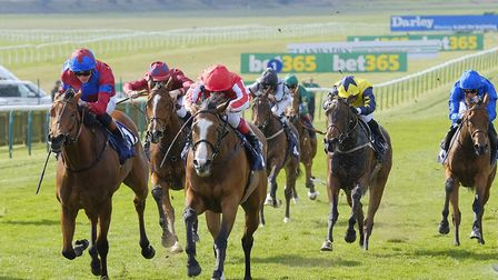 Late fans were remembered at the Rowley Mile racecourse in Newmarket at the QIPCO Guineas Festival P