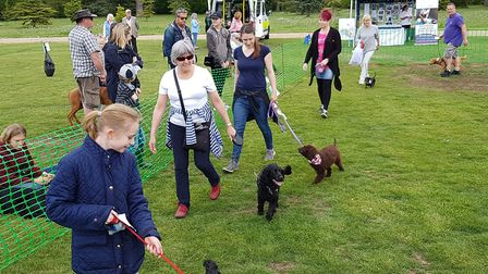 The event raises money for Hearing Dogs for Deaf People Picture: RACHEL EDGE