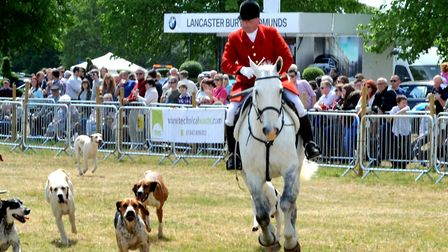 The Parade of Hounds in 2017 Picture: ANDY ABBOTT