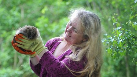 Paula Baker, with Lily the rescue hedgehog Picture: SARAH LUCY BROWN