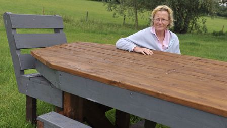 Organiser Gillie Cranfield is gearing up for Stratford Hills in 2014 Picture: SU ANDERSON