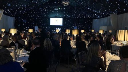 Home-Start in Suffolk's Snowflake Ball marked the charity's 20th anniversary ball. Picture: HOME-STA
