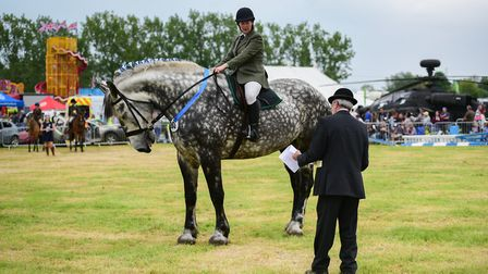 The grand parade at Hadleigh Show Picture: SARAH LUCY BROWN