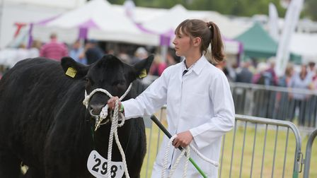 There was lots to enjoy at the Hadleigh Show Picture: SARAH LUCY BROWN
