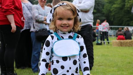 Paws in the Park, in Nowton Park Bury St Edmunds is a popular family event Picture: ST NICHOLAS HOSP