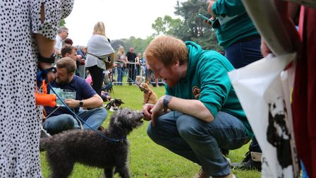 Did you enjoy the treats on offer from Paws in the Park on Sunday? Picture: ST NICHOLAS HOSPICE