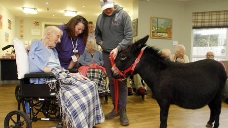Resident Edna Cox from Hartismere Place in Eye with a miniature donkey. Picture: PAUL NIXON