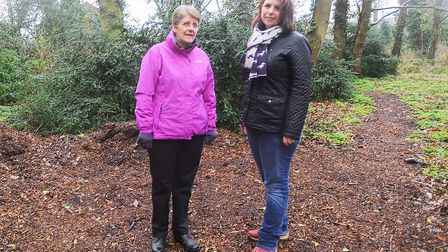 Left to right, councillor Ann Williamson and former councillor Sarah Stamp Picture: GREGG BROWN