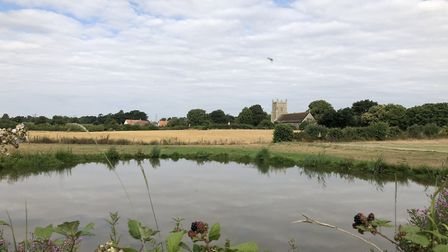 Campaigners say a wind farm substation will have a huge impact on Friston Picture: SASES