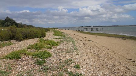 The view on Osea Island in Essex Picture: CHARLOTTE SMITH-JARVIS