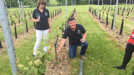 Peter Moore discusses the wine-growing process Picture; Ross Bentley