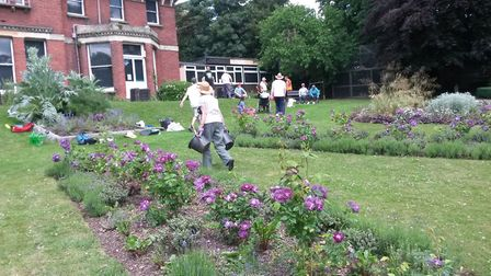 Volunteers spruce up the flower beds at Belle Vue Park in Sudbury in June 2017 Picture: CONTRIBUTED