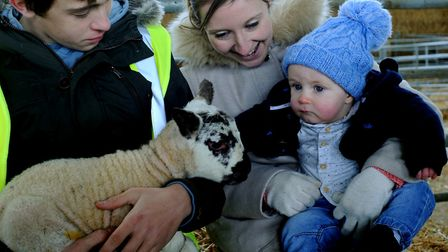 The first Lambing Sunday held at Otley College. Otley student Oliver Johnson with eight month old