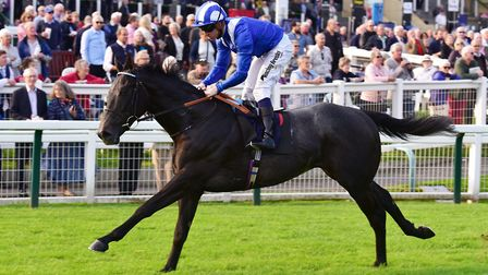 Jim Crowley will be aboard Mankib at Haydock. Picture: Nick Butcher
