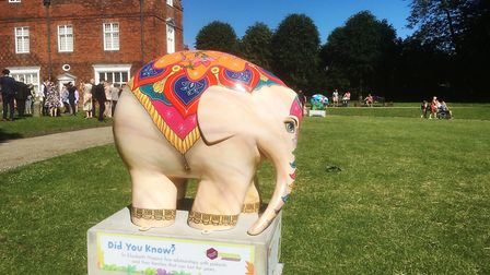 One of the beautiful Elmer trail elephants outside Christchurch Mansion Picture: DAVID VINCENT