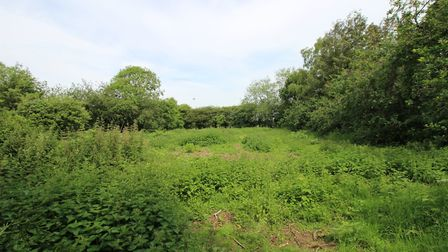The half-an-acre garden at Heckfield Green also need some attention Picture: MARK WILLETT