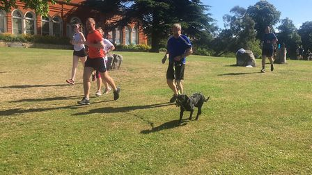 Runners and dogs alike lapped up the weekly 5K challenge at the Greenwich parkrun last Saturday morn