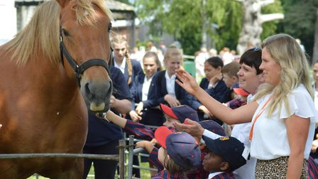 Ten year-old Suffolk Punch foal met pupils from St Joseph's in Ipswich as part of the Suffolk Day ce
