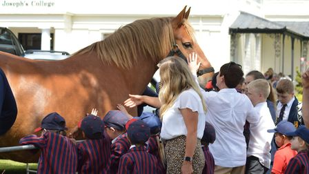 The children - and adults - were captivated by the ten year-old foal Picture: LUCY BOLTON