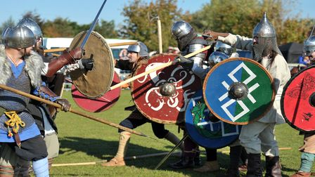 Vikings are set to return to Stonham Barns this weekend Picture: SARAH LUCY BROWN