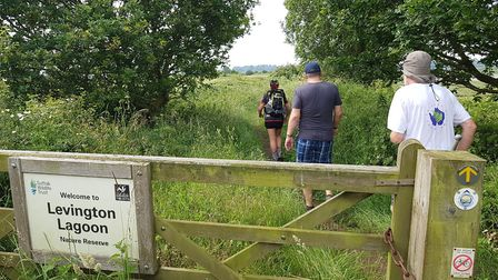 Runners went through the levington Lagoon at the Orwell Challenge. Picture: RACHEL EDGE