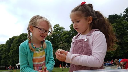 Melton Primary School held their annual Happiness Festival Picture: RACHEL EDGE