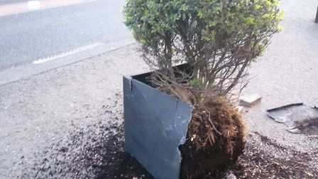 Planters were smashed at the Unruly Pig Picture: BRENDAN PADFIELD