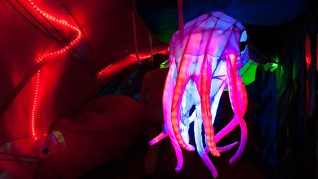 An underwater world will be created at the Jubilee Hall in Aldeburgh during August. Picture: Julia C