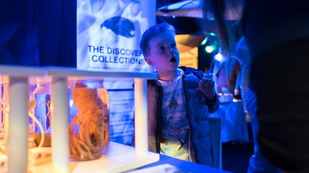 Marine specimens will be on view Picture: Daniel Cook