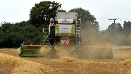 Combining in fields at Butley, near Woodbridge Picture: SARAH LUCY BROWN